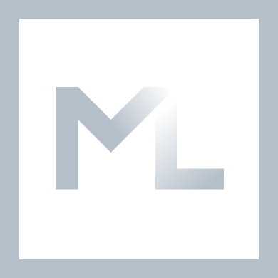 Mike Lenoir - WordPress Development Solutions